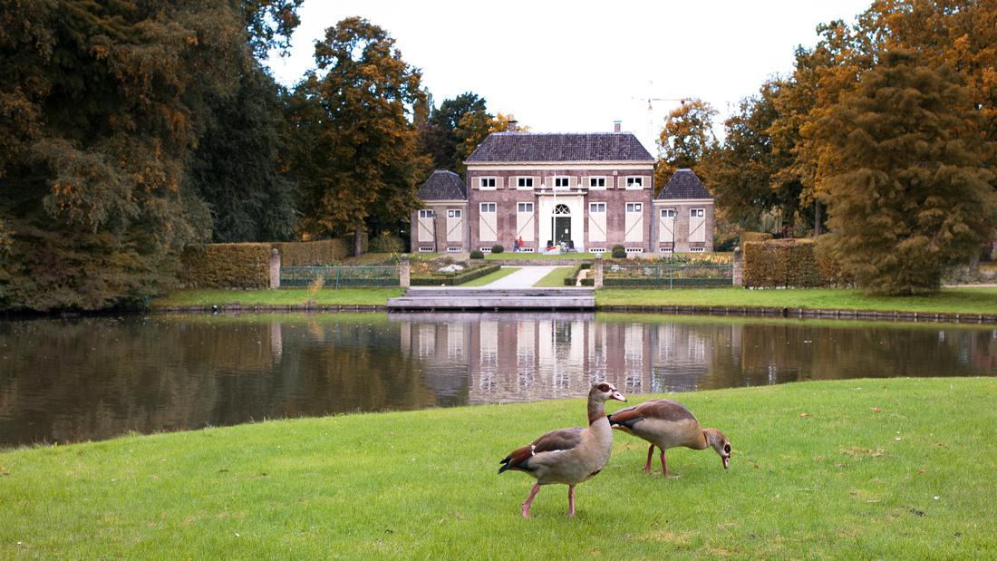 Maas walk 201015
