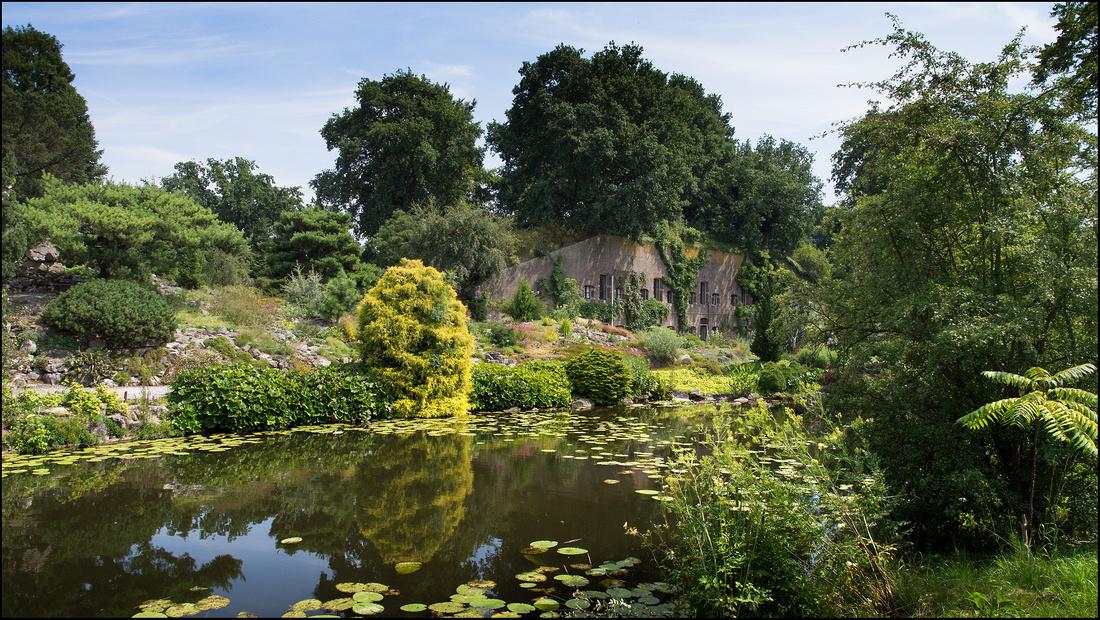 Botanical garden - Utrecht